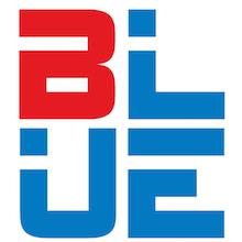 Blue Technology Solutions LLC